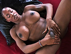 Hot muscle chocolate ladyboy cuddle balls